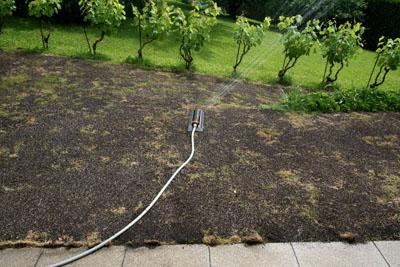 Quelques millilitres pour une grosse connerie for Temps de germination gazon